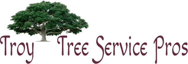Tree Removal Service Troy Michigan